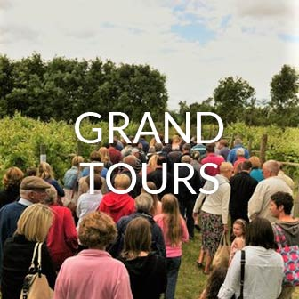 Group Vineyard Tours